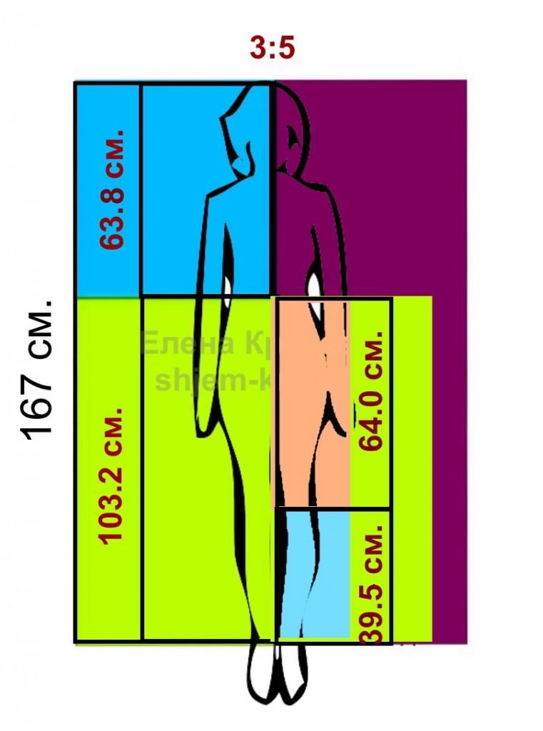 Определение гармоничной длины при помощи золотого сечения (часть 2)